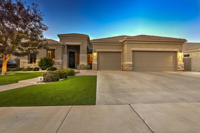 3036 E Canyon Creek Drive, Gilbert, AZ 85295 (MLS #5869489) :: Arizona 1 Real Estate Team
