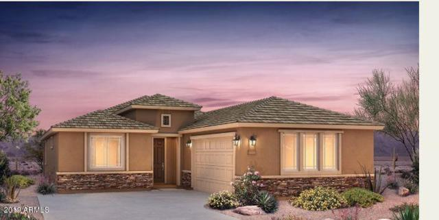 21354 N 260TH Lane, Buckeye, AZ 85396 (MLS #5869524) :: Phoenix Property Group