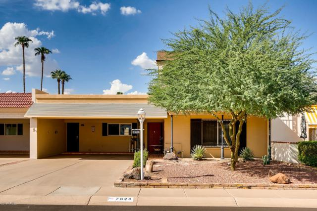 7624 E Bonita Drive, Scottsdale, AZ 85250 (MLS #5869530) :: The Daniel Montez Real Estate Group