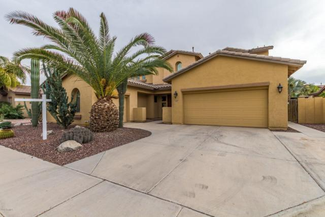 3917 E Taurus Place, Chandler, AZ 85249 (MLS #5869544) :: The Kenny Klaus Team