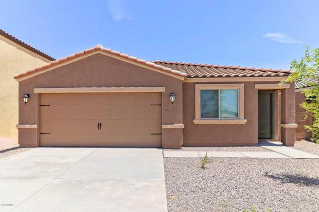 13142 E Chuparosa Lane, Florence, AZ 85132 (MLS #5869548) :: RE/MAX Excalibur