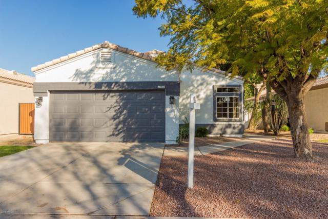 1538 E Beacon Drive, Gilbert, AZ 85234 (MLS #5869562) :: Keller Williams Realty Phoenix