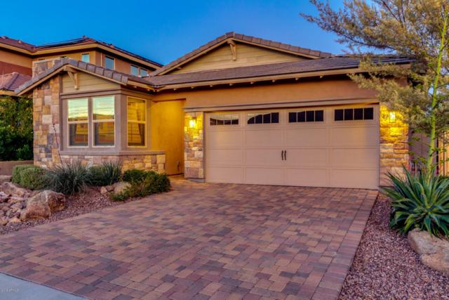 32169 N 129TH Avenue, Peoria, AZ 85383 (MLS #5869570) :: The Laughton Team