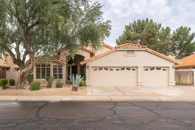 4877 W Carla Vista Court, Chandler, AZ 85226 (MLS #5869604) :: Keller Williams Realty Phoenix