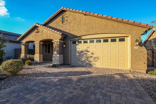 258 E Canyon Way, Chandler, AZ 85249 (MLS #5869631) :: Keller Williams Realty Phoenix