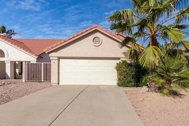 4230 E Mountain Sage Drive, Phoenix, AZ 85044 (MLS #5869639) :: Keller Williams Realty Phoenix