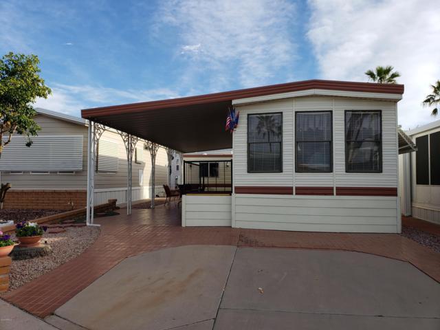 1003 W Pawnee Avenue, Apache Junction, AZ 85119 (MLS #5869644) :: The Kenny Klaus Team