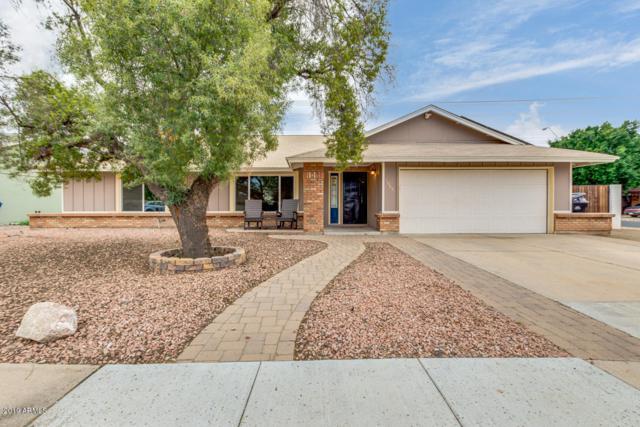 1065 W Naranja Avenue, Mesa, AZ 85210 (MLS #5869648) :: Keller Williams Realty Phoenix