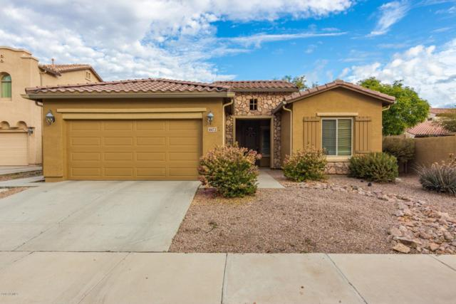 16172 W Crenshaw Street, Surprise, AZ 85379 (MLS #5869684) :: The W Group