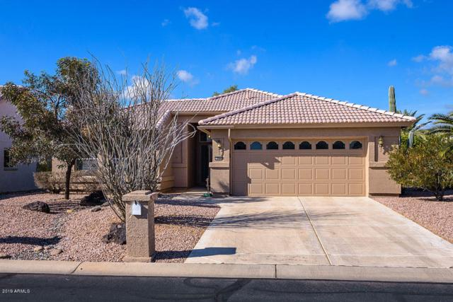3764 N 150TH Lane, Goodyear, AZ 85395 (MLS #5869685) :: The Sweet Group