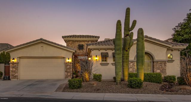 5045 S Mingus Place, Chandler, AZ 85249 (MLS #5869753) :: Arizona 1 Real Estate Team