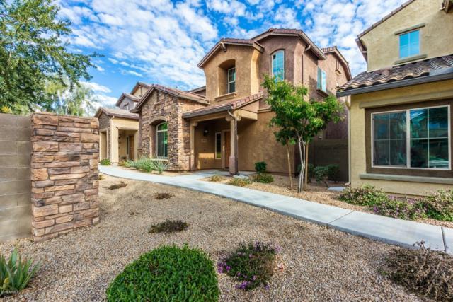 3652 E Covey Lane, Phoenix, AZ 85050 (MLS #5869808) :: RE/MAX Excalibur