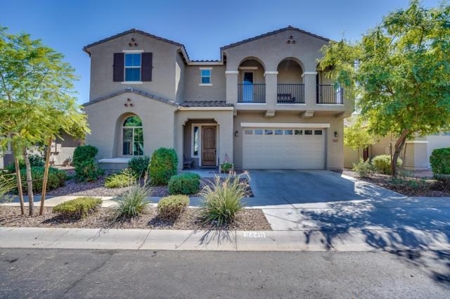 3449 E Harrison Street, Gilbert, AZ 85295 (MLS #5869814) :: Riddle Realty