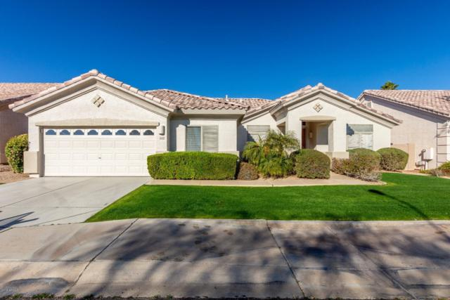 3640 S Vista Place, Chandler, AZ 85248 (MLS #5869817) :: The W Group