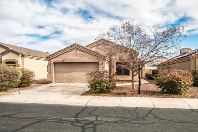 14321 N 129TH Avenue, El Mirage, AZ 85335 (MLS #5869836) :: Keller Williams Realty Phoenix