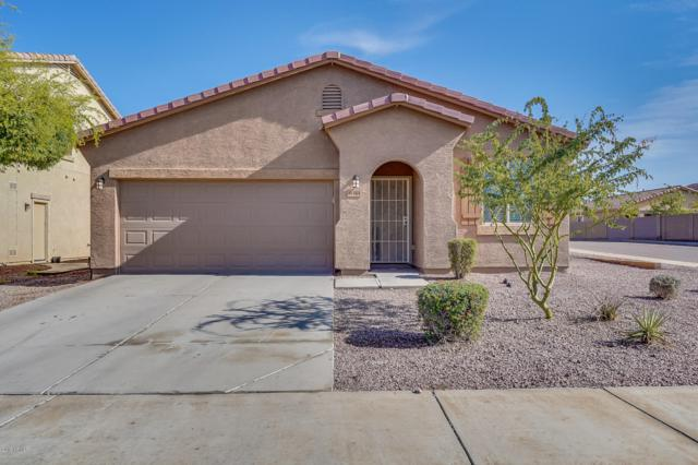 6411 S 73RD Drive, Laveen, AZ 85339 (MLS #5869847) :: Group 46:10