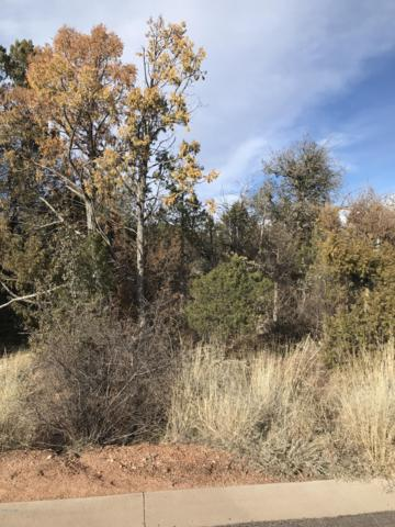 1302 W Norris Court, Payson, AZ 85541 (MLS #5869881) :: Yost Realty Group at RE/MAX Casa Grande