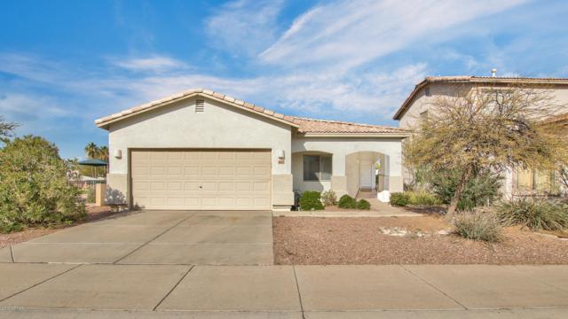 6442 W Elwood Street, Phoenix, AZ 85043 (MLS #5869905) :: The W Group
