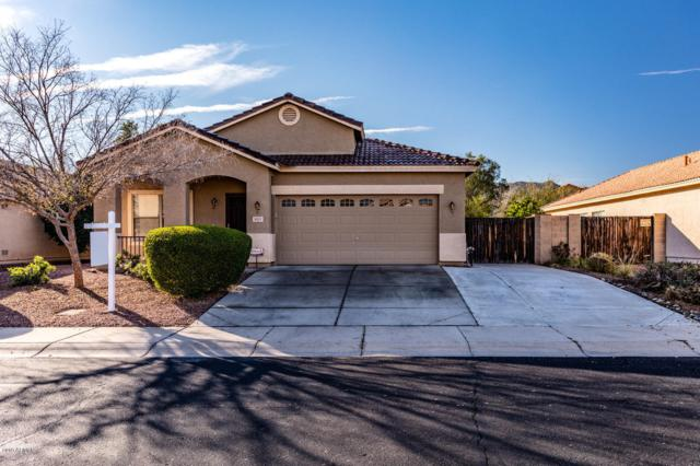 925 E Pedro Road, Phoenix, AZ 85042 (MLS #5870054) :: Gilbert Arizona Realty