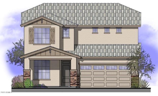 18191 W Carlota Lane, Surprise, AZ 85387 (MLS #5870059) :: Phoenix Property Group