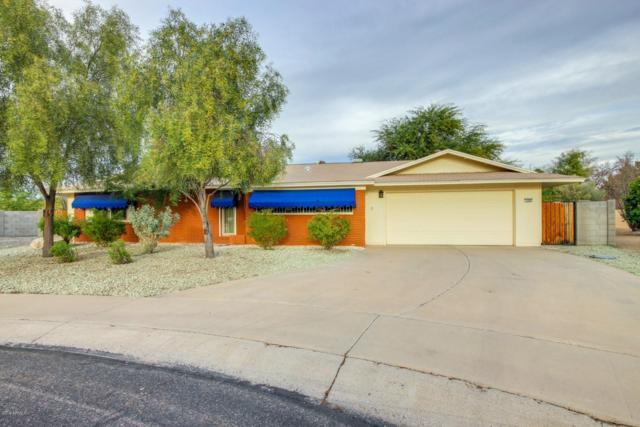 9302 W Buckhorn Court, Sun City, AZ 85373 (MLS #5870117) :: The Property Partners at eXp Realty