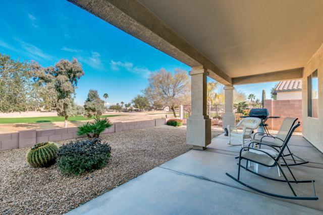 3918 E Hazeltine Way, Chandler, AZ 85249 (MLS #5870136) :: Riddle Realty