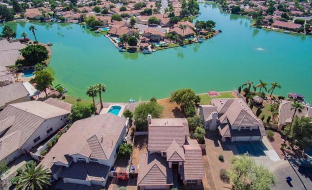 11015 W Laurelwood Lane, Avondale, AZ 85392 (MLS #5870146) :: The Daniel Montez Real Estate Group