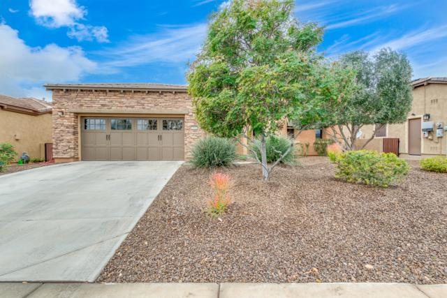 29684 N 130TH Glen, Peoria, AZ 85383 (MLS #5870177) :: The Laughton Team