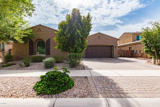 1915 N 142ND Avenue, Goodyear, AZ 85395 (MLS #5870180) :: The AZ Performance Realty Team