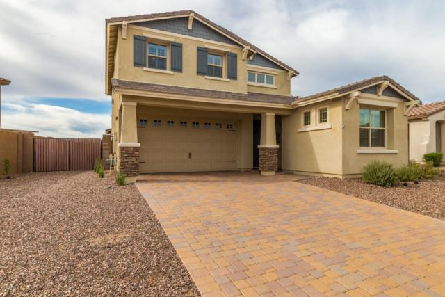 30754 N 138TH Avenue N, Peoria, AZ 85383 (MLS #5870231) :: The Laughton Team
