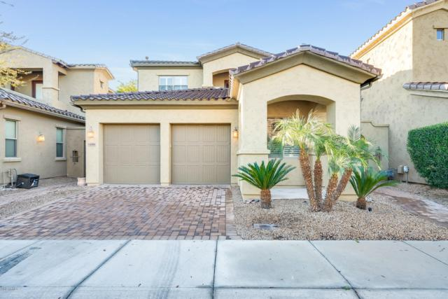 14261 W Harvard Street, Goodyear, AZ 85395 (MLS #5870249) :: The AZ Performance Realty Team