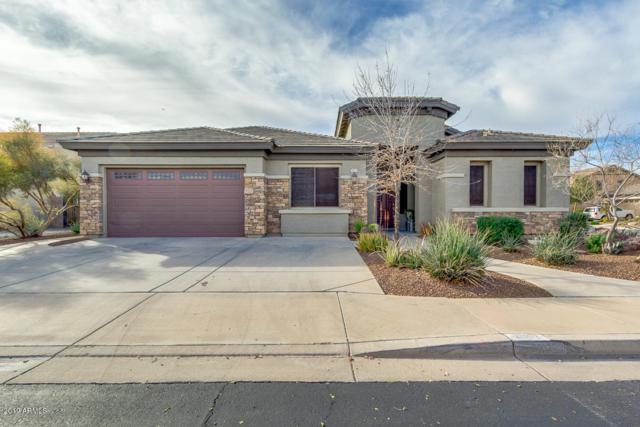 4052 S Danyell Drive, Chandler, AZ 85249 (MLS #5870317) :: Yost Realty Group at RE/MAX Casa Grande