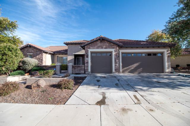 26504 W Runion Lane, Buckeye, AZ 85396 (MLS #5870343) :: The Sweet Group
