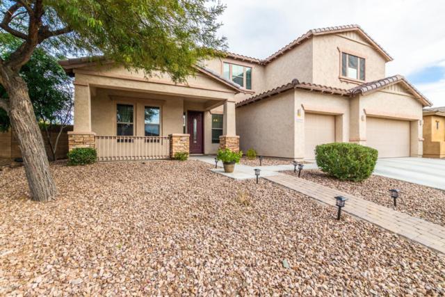 12344 W Milton Drive, Peoria, AZ 85383 (MLS #5870392) :: Riddle Realty