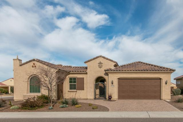 27002 W Oraibi Drive, Buckeye, AZ 85396 (MLS #5870396) :: The Laughton Team