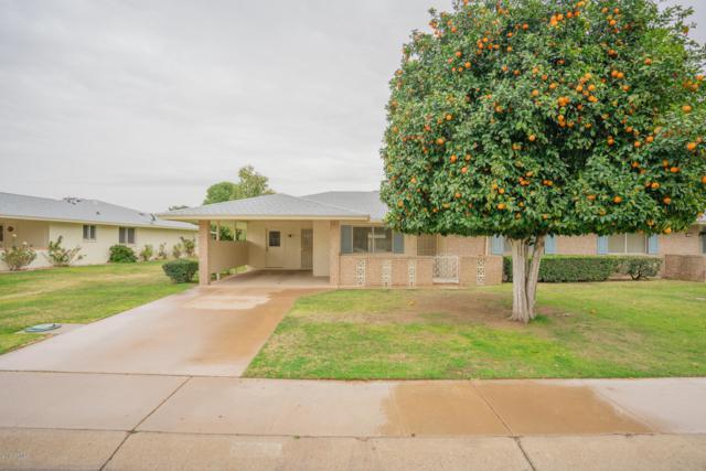 10421 W Desert Forest Circle, Sun City, AZ 85351 (MLS #5870409) :: The Daniel Montez Real Estate Group
