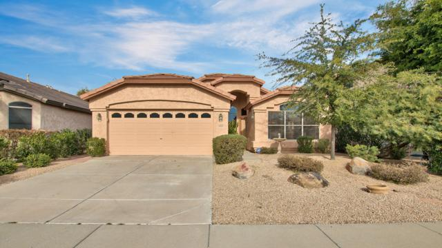 4514 E Melinda Lane, Phoenix, AZ 85050 (MLS #5870452) :: RE/MAX Excalibur