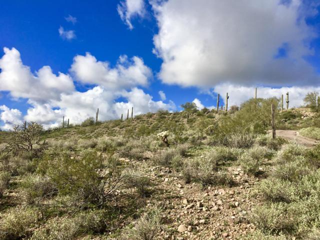 3353 W Roughrider Road, New River, AZ 85087 (MLS #5870454) :: Yost Realty Group at RE/MAX Casa Grande