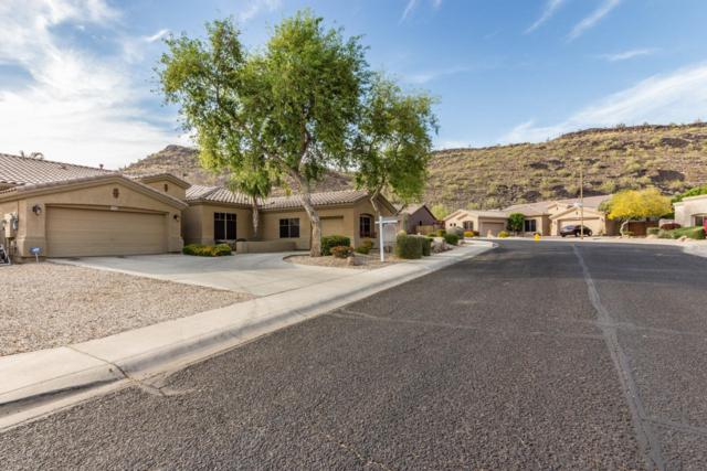 26408 N 42ND Drive, Phoenix, AZ 85083 (MLS #5870476) :: RE/MAX Excalibur