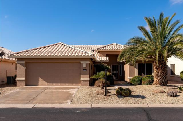 3656 N 162ND Lane, Goodyear, AZ 85395 (MLS #5870477) :: The Sweet Group