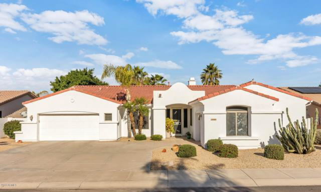 14464 W Merrell Street, Goodyear, AZ 85395 (MLS #5870484) :: Phoenix Property Group