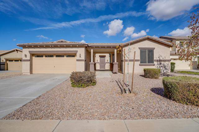 21452 E Saddle Court, Queen Creek, AZ 85142 (MLS #5870486) :: The Everest Team at My Home Group