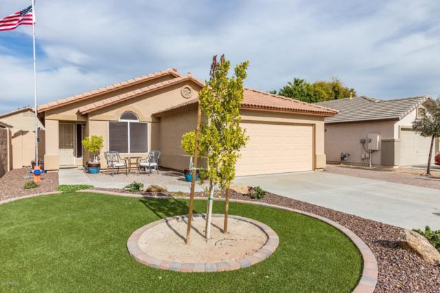 8148 W Mary Ann Drive, Peoria, AZ 85382 (MLS #5870496) :: The Laughton Team