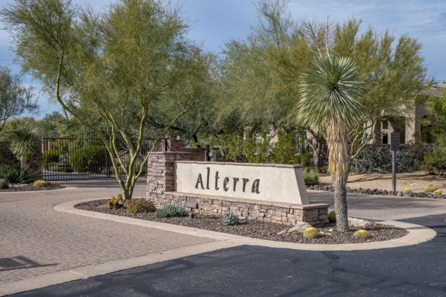 6336 E Ironwood Drive, Scottsdale, AZ 85266 (MLS #5870520) :: Phoenix Property Group