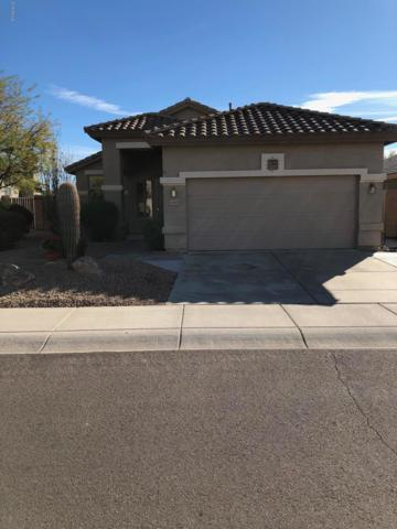23607 N 21ST Place, Phoenix, AZ 85024 (MLS #5870545) :: Lifestyle Partners Team