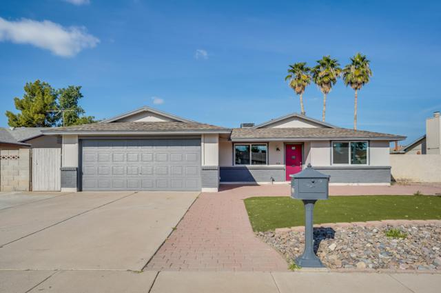 1804 W Nopal Drive, Chandler, AZ 85224 (MLS #5870566) :: Berkshire Hathaway Home Services Arizona Properties
