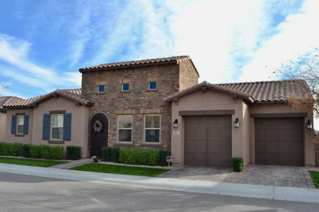 2041 W Musket Place, Chandler, AZ 85286 (MLS #5870574) :: Santizo Realty Group