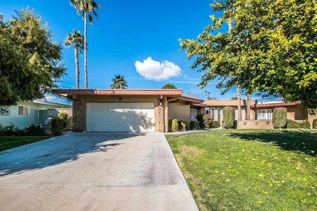 10646 W Pineaire Drive, Sun City, AZ 85351 (MLS #5870579) :: The Daniel Montez Real Estate Group