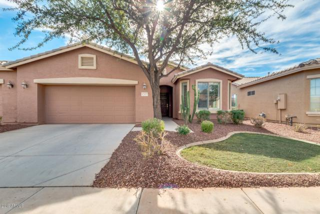 42433 W Candyland Place, Maricopa, AZ 85138 (MLS #5870613) :: The Daniel Montez Real Estate Group