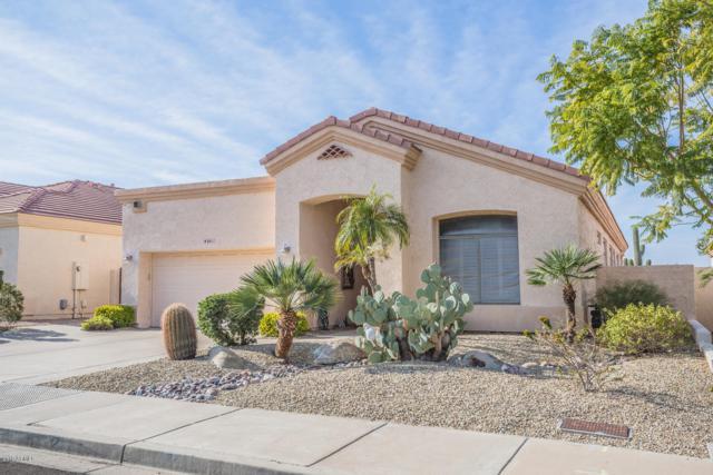 6611 E Viewmont Drive, Mesa, AZ 85215 (MLS #5870618) :: CC & Co. Real Estate Team